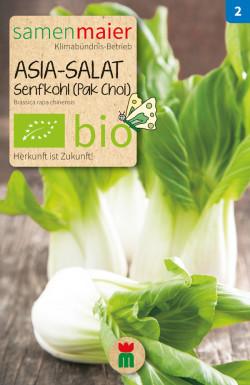 Asia-Salat-Pak-Choi