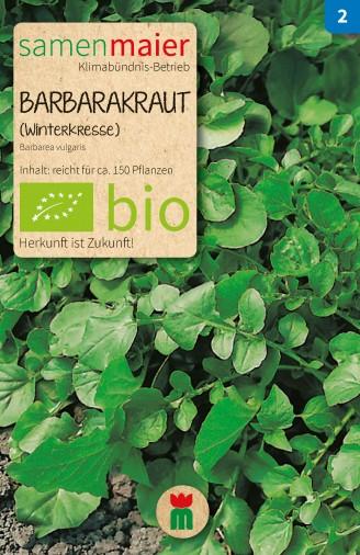 BIO Barbarakraut Winterkresse - Barbarea vulgaris