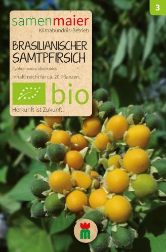 BIO Brasilianischer Samtpfirsich - Cyphomandra abutiloides