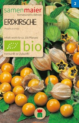 BIO Erdkirsche - Physalis pruinosa