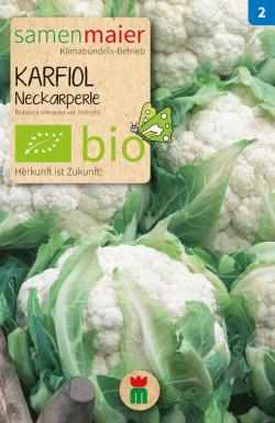 Karfiol-Neckarperle
