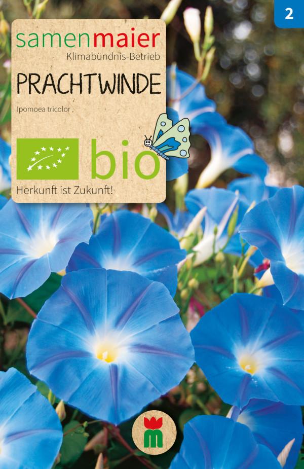 BIO Prachtwinde - Ipomoea tricolor