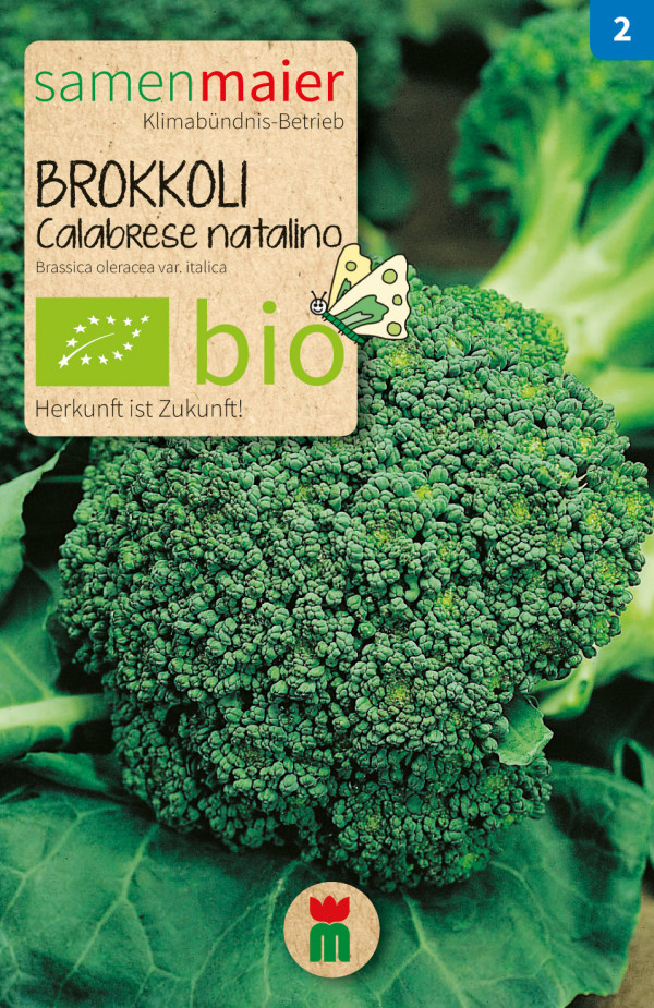 BIO Brokkoli Calabrese natalino - Brassica oleracea var. italica