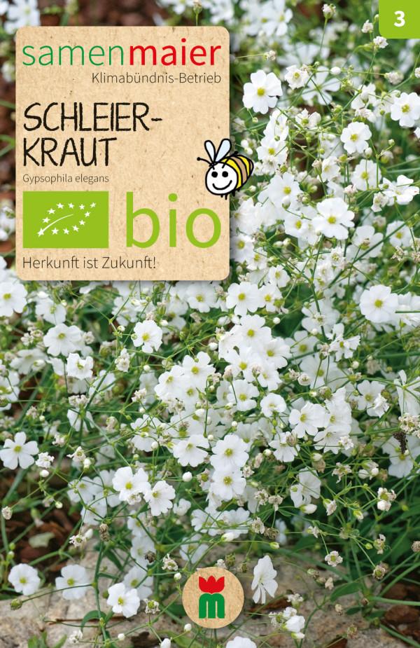 BIO Schleierkraut - Gypsophila elegans