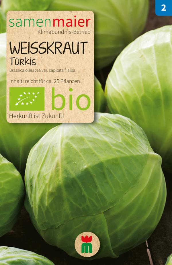 BIO Weisskraut Tuerkis - Brassica oleracea var. capitata f. alba