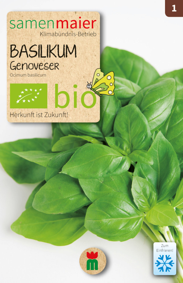 BIO Basilikum Genoveser - Ocimum basilicum