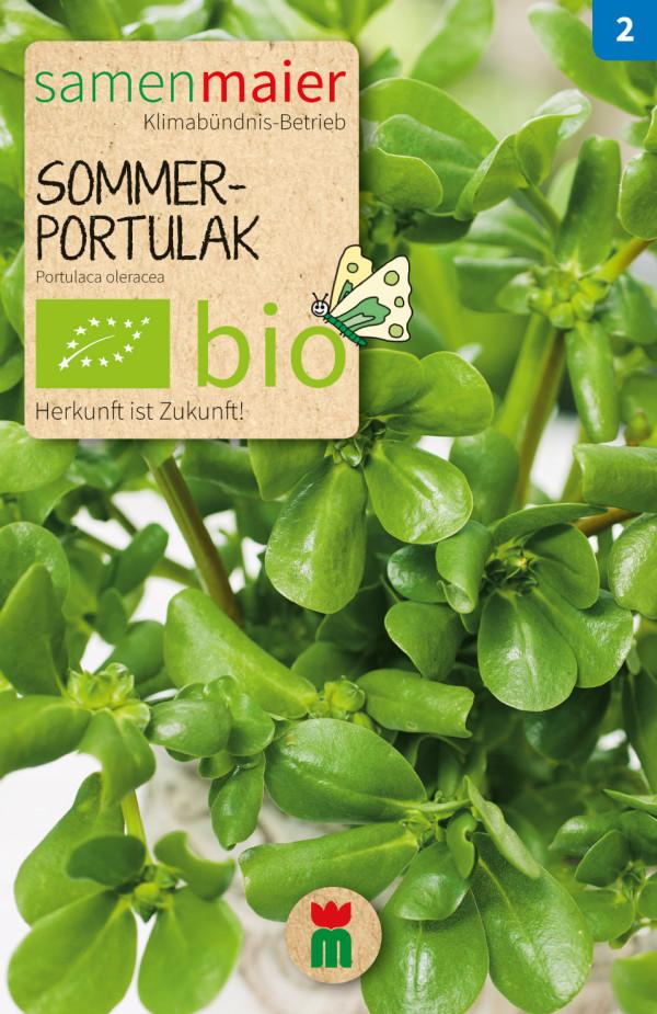 BIO Sommerportulak - Portulaca oleracea