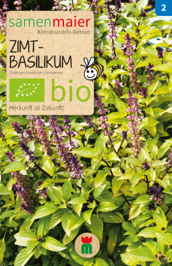 BIO Zimtbasilikum - Ocimum basilicum cinnamon