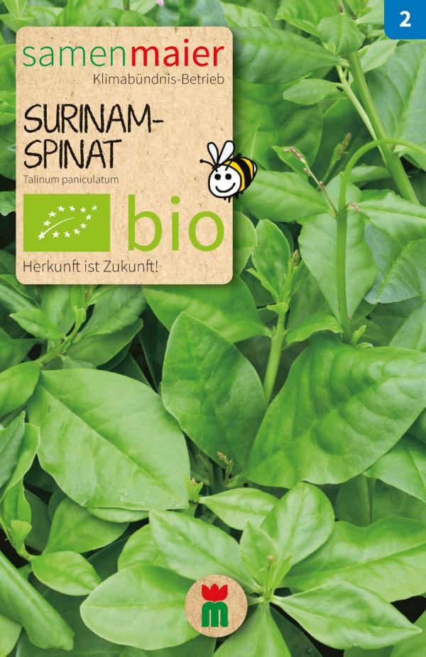BIO Surinam Spinat - Talinum paniculatum