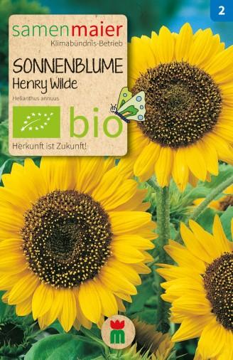 BIO Sonnenblume Henry Wilde - Helianthus annuus