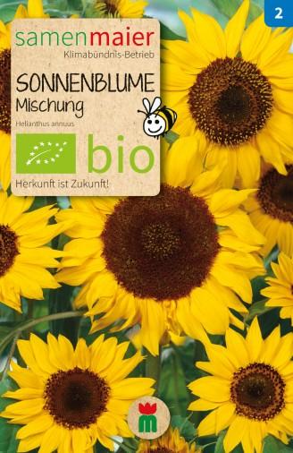 BIO Sonnenblume Mischung - Helianthus annuus