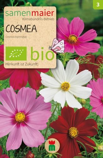 BIO Cosmea Mischung - Cosmos bipinnatus