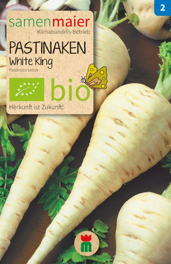 BIO Pastianken White King - Pastinaca sativa