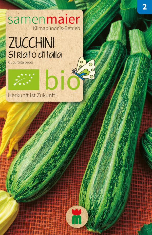 BIO Zucchini Striato d'Italia - Cucurbita pepo