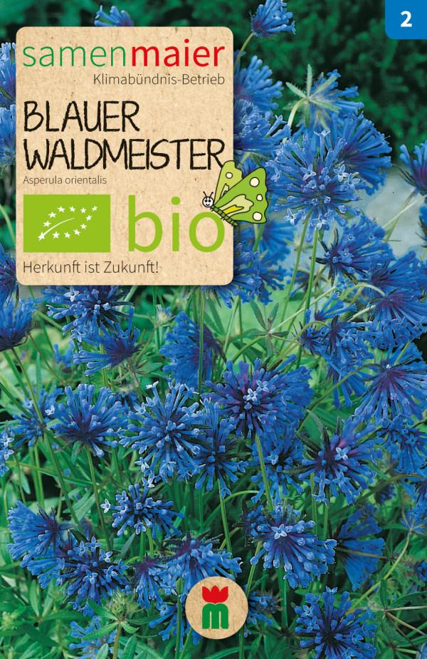 BIO Blauer Waldmeister - Asperula orientalis