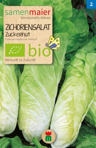 Berühmt Bio Zichoriensalat Zuckerhut | Samen Maier #MK_46