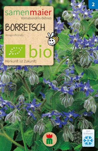 BIO Borretsch - Borago officinalis