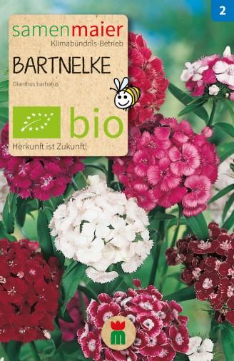 BIO Bartnelke - Dianthus barbatus