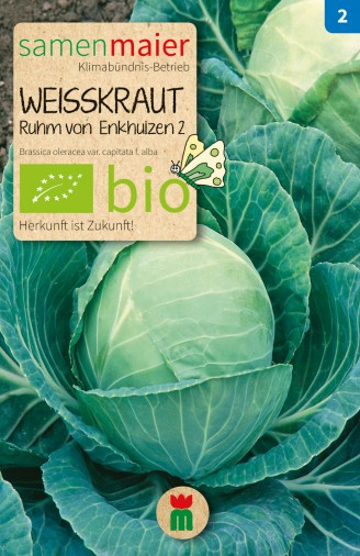 BIO Weisskraut Ruhm von Enkhuizen 2 - Brassica oleracea var. capitata f. alba