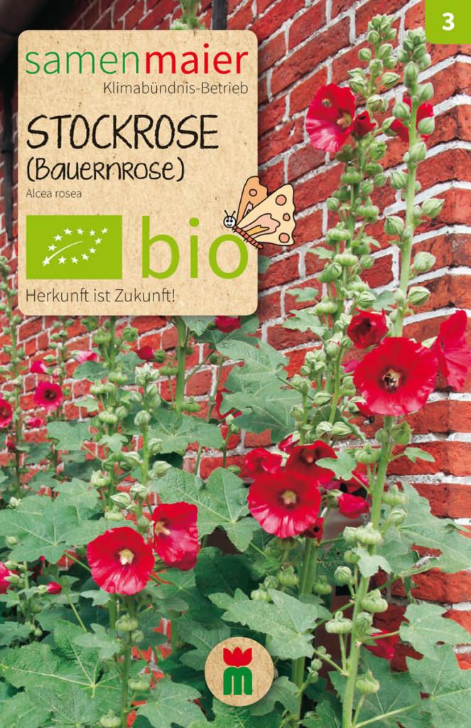 bio stockrose bauernrose samen maier. Black Bedroom Furniture Sets. Home Design Ideas