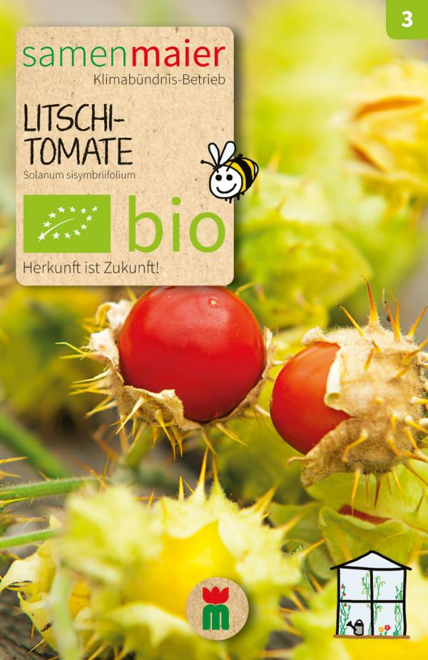 BIO Litschi-Tomate - Solanum sisymbriifolium