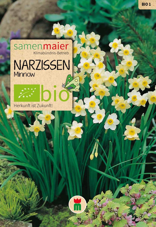 Gartenarbeit im september samen maier - Gartenarbeit im september ...