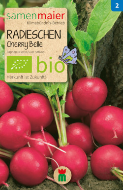 Radieschen-Cherrybelle