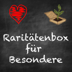 Raritaetenbox