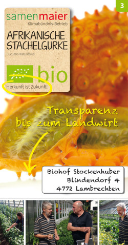 Transparent-Stachelgurke
