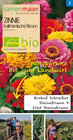 Transparent-Zinnie-Schreiber