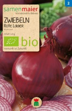 BIO Zwiebeln Rote Laaer - Allium cepa