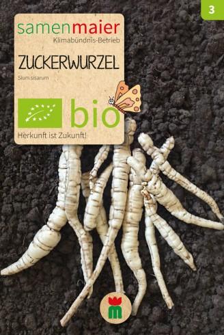 Bio Zuckerwurzel Sium sisarum